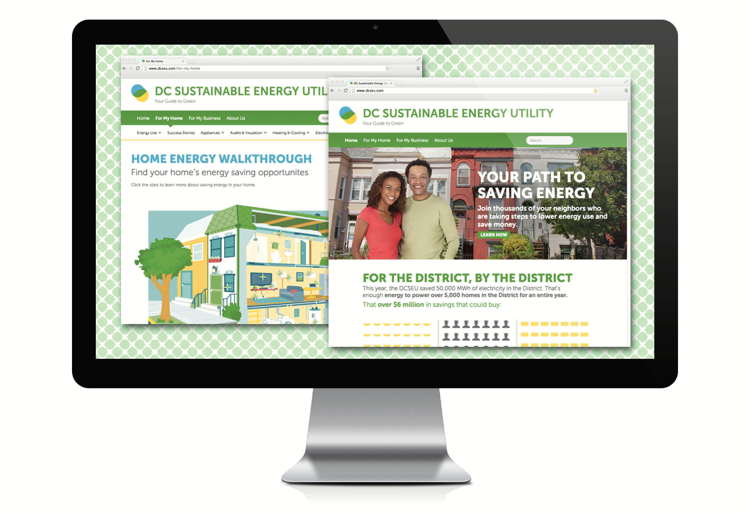 DCSEU website, homepage and home energy walkthrough page